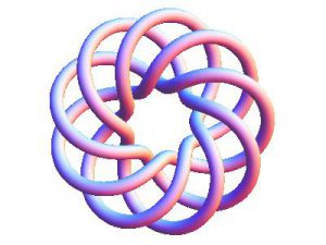 Which came first: the chicken or the egg? Where is the beginning and where is the end of this torus knot?